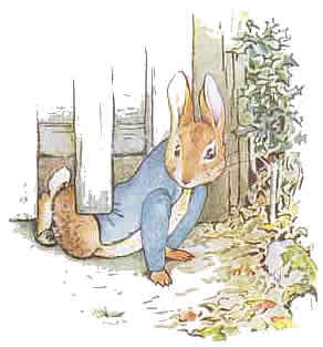 peterrabbit06